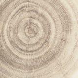 Древесина зерна конца Стоковое Фото