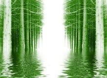 древесина зимы предпосылки Стоковое Изображение RF