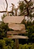древесина знака Стоковые Изображения