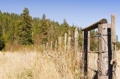 Древесина и проволочная изгородь колючки Стоковые Изображения