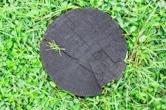 Древесина и трава на земной текстуре Стоковая Фотография