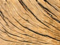 древесина картины зерна старая Стоковые Фотографии RF