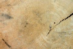 древесина картины поверхностная Стоковая Фотография RF