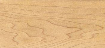 древесина клена Стоковое Фото
