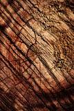 Древесина конспекта поцарапанная отрезком Стоковые Фото