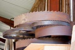 древесина круглой пилы лезвий Стоковое фото RF