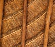 древесина крыши palapa Мексики детали кабины тропическая Стоковая Фотография RF