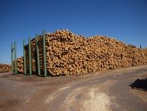 древесина кучи Стоковая Фотография RF