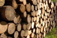 древесина кучи Стоковое фото RF