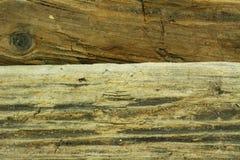 древесина моря Стоковая Фотография