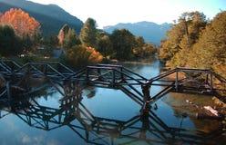 древесина моста Стоковые Изображения RF