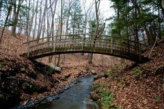 древесина моста Стоковое Изображение RF
