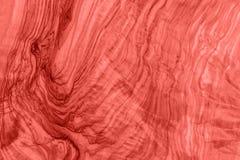 Древесина оливки предпосылки Предпосылка древесины год сбора винограда Живя Col коралла стоковое фото rf