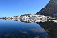 Древесина парка зеленого цвета голубого неба природы горы заволакивает отражение озера славное Стоковое Фото