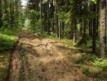 древесина песка шерсти вырезывания Стоковое Изображение RF
