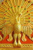 древесина поверхности павлина гравировки стоковое изображение rf
