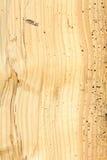 Древесина поврежденная woodworm Стоковое фото RF