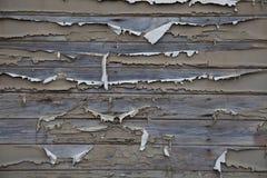 древесина покрашенная предпосылкой выдержанная Стоковое Изображение RF
