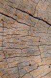 древесина предпосылки выдержанная текстурой Стоковые Изображения RF