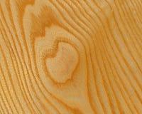 древесина предпосылки золы Стоковое Изображение