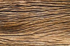 древесина предпосылки Стоковое Фото