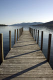 древесина пристани Стоковое Изображение RF