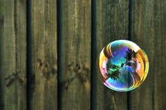 древесина пузыря предпосылки Стоковые Изображения RF