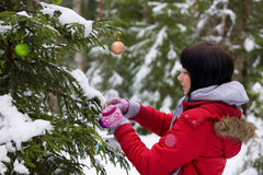 древесина рождества Стоковое Изображение RF
