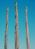 древесина скульптуры Стоковое Изображение