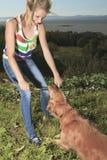 Древесина собаки подростковая Стоковое Изображение RF