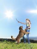 Древесина собаки подростковая Стоковые Фотографии RF