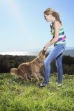 Древесина собаки подростковая Стоковые Изображения RF