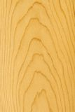 древесина сосенки детали Стоковые Изображения