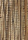 древесина текстурированная предпосылкой стоковая фотография rf
