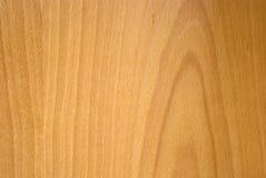 древесина текстуры бука Стоковые Фото