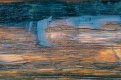 древесина текстуры влажная против предпосылки голубые облака field wispy неба природы зеленого цвета травы белое Стоковое Изображение RF