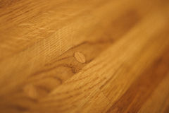 древесина текстуры дуба Стоковая Фотография