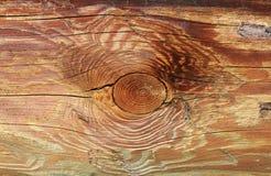 древесина текстуры зерна естественная Стоковые Изображения