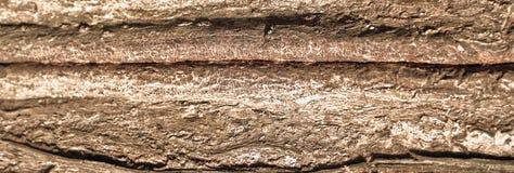 древесина текстуры зерна старая богатая Стоковые Изображения RF