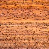 древесина текстуры зерна Стоковые Изображения RF