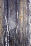 древесина текстуры теней предпосылки коричневая Стоковые Фото