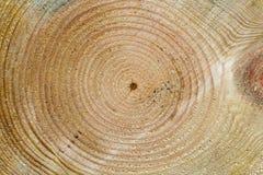древесина текстуры стоковое изображение