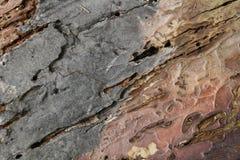 древесина текстуры grunge предпосылки Стоковая Фотография