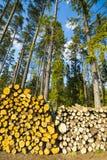 Древесина для каминов Стоковые Изображения RF