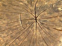 Древесина стоковое изображение rf