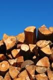 древесина 71 Стоковое Фото