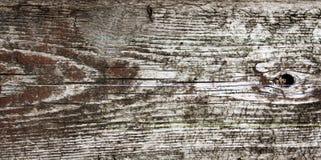 древесина grunge предпосылки Стоковые Изображения RF