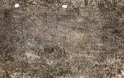 древесина grunge предпосылки Стоковое Изображение