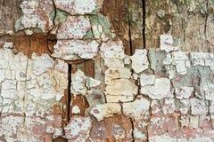 Древесина Grunge с краской шелушения, большой предпосылкой Стоковое фото RF