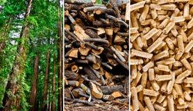 Древесина pellets продукция Стоковое Изображение